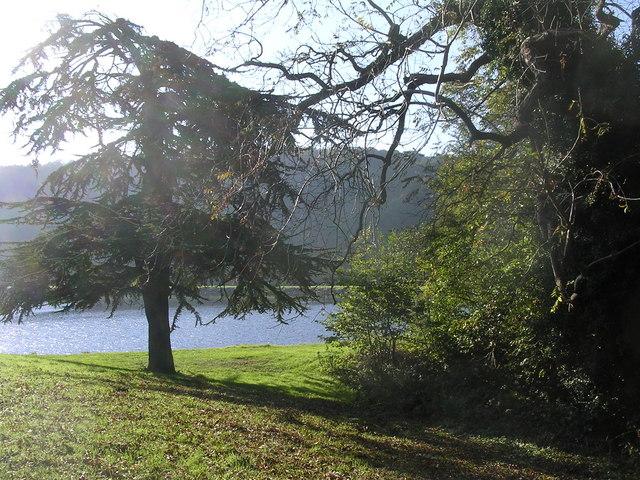 Trimpley Reservoir - geograph.org.uk - 273599