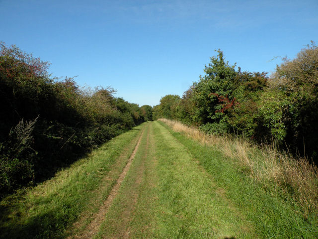 View NW along the Roman Road - geograph.org.uk - 998788