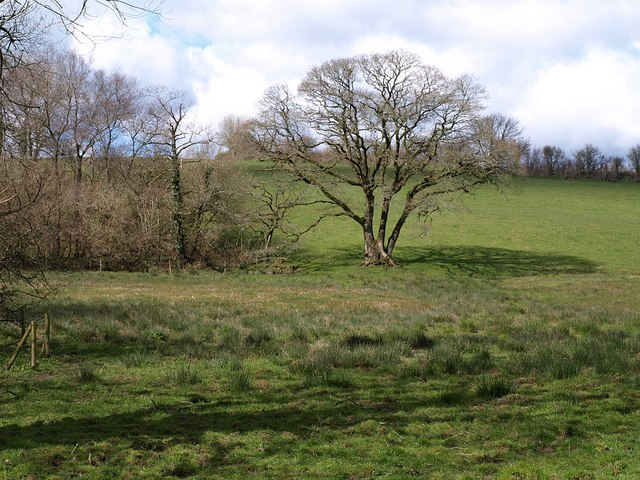 File:Waldon valley - geograph.org.uk - 740963.jpg