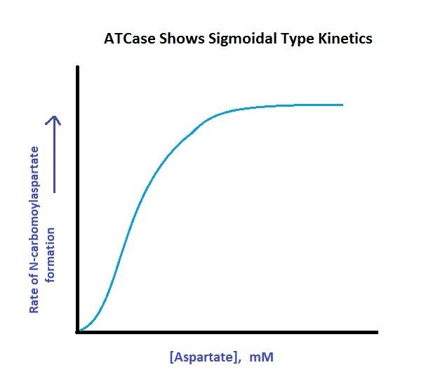 File Atcase Sigmoidal Kinetics Jpg Wikimedia Commons