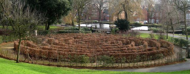 Beech maze, Arboretum - geograph.org.uk - 1137684