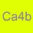 Ca4b.jpg