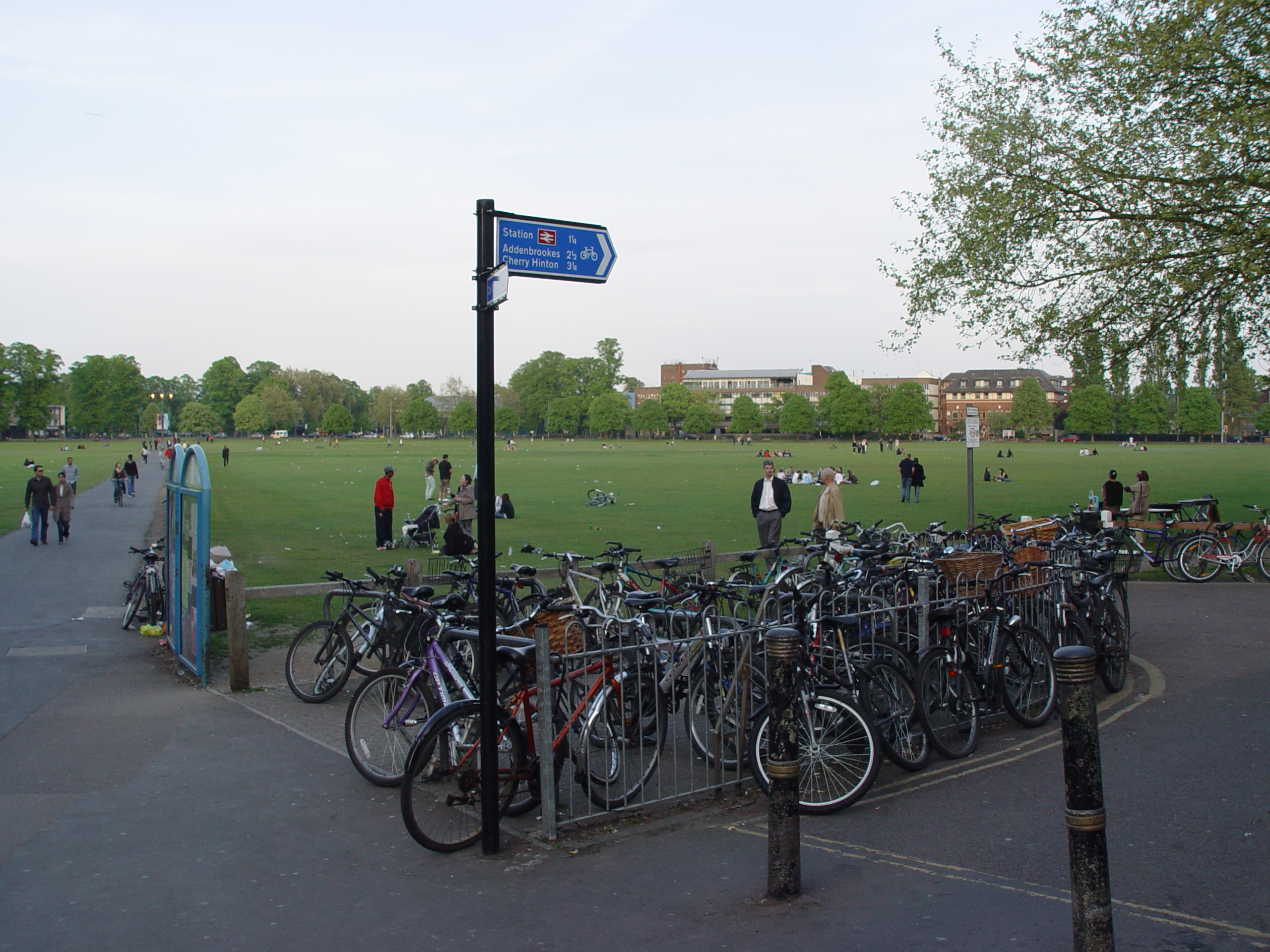 File Cambridge Parkers Piece Bicycle Racks Jpg Wikimedia