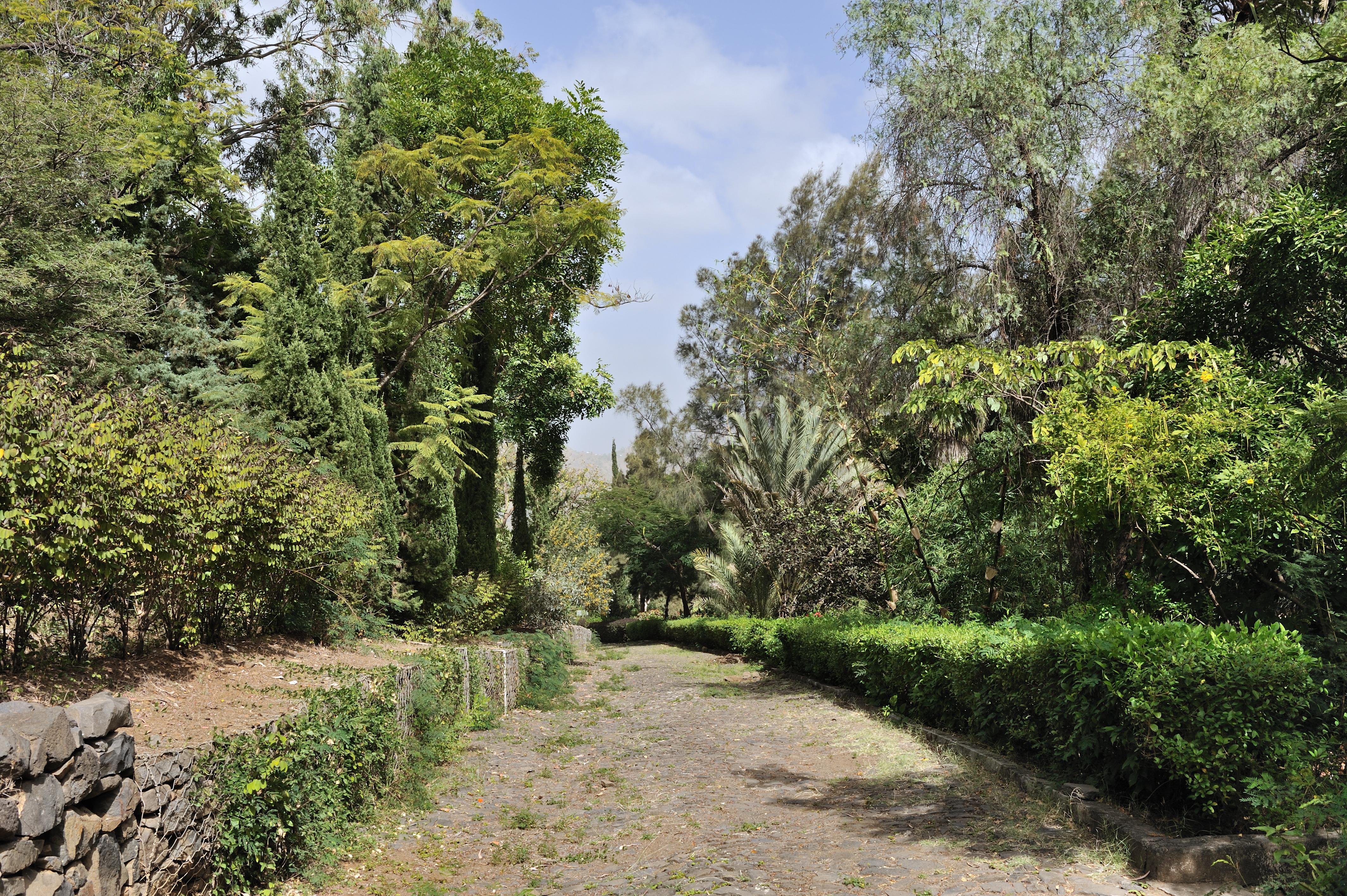 File cape verde santiago national botanical for Botanic com jardin