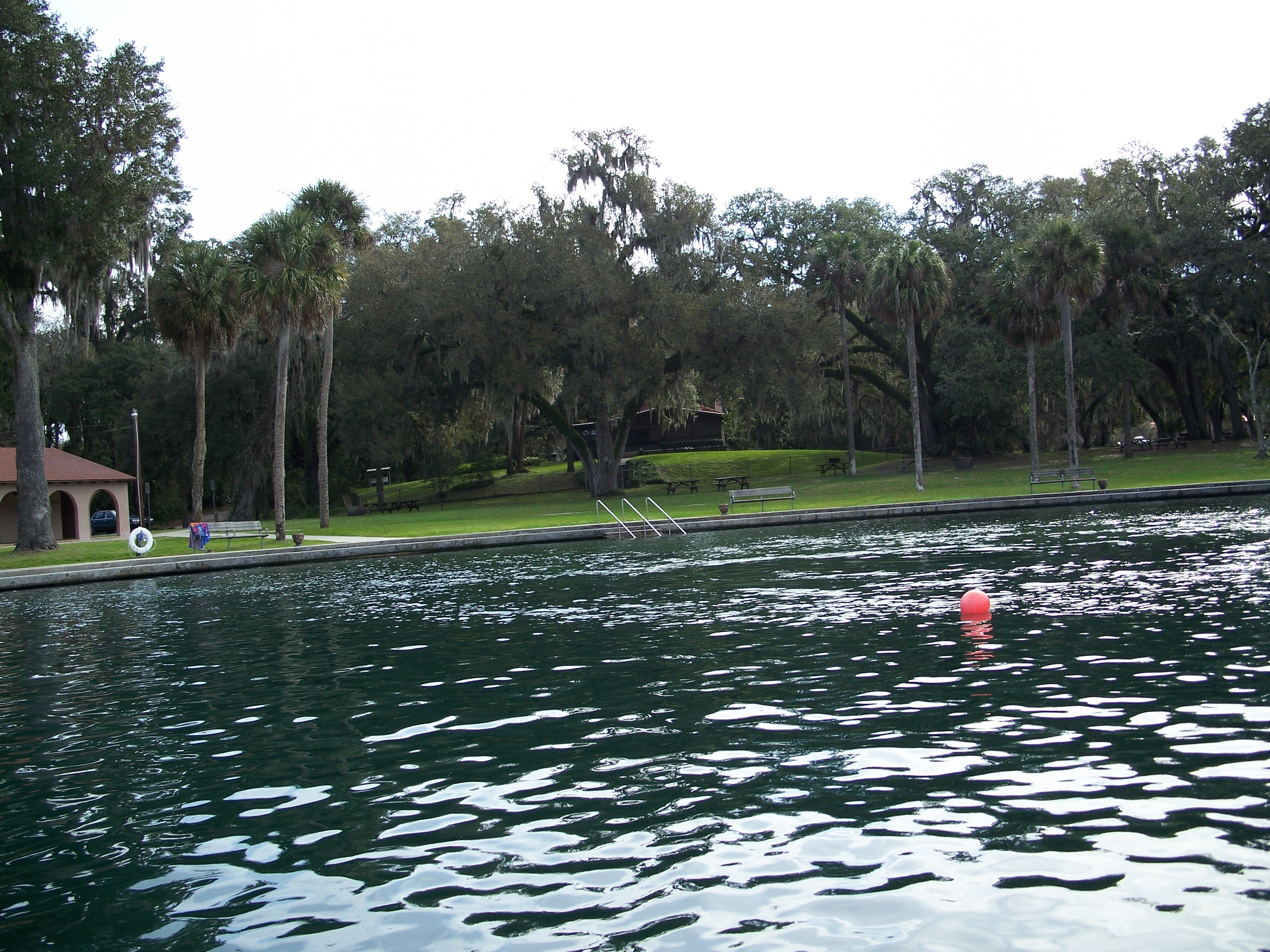de leon springs singles Reserve a table for the best dining in de leon springs, florida on tripadvisor: see 590 reviews of 8 de leon springs restaurants and search by cuisine, price.