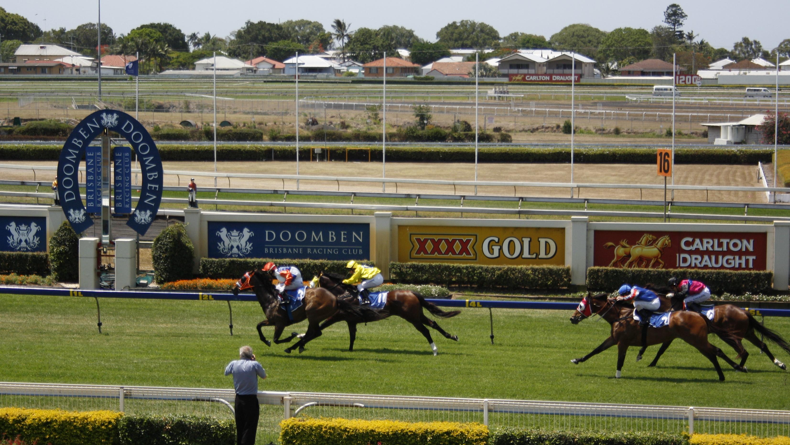 Sport Quiz - Horse Racing (25 Questions)