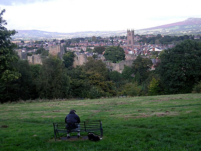 Enjoying the view on Whitcliffe Common - geograph.org.uk - 992184