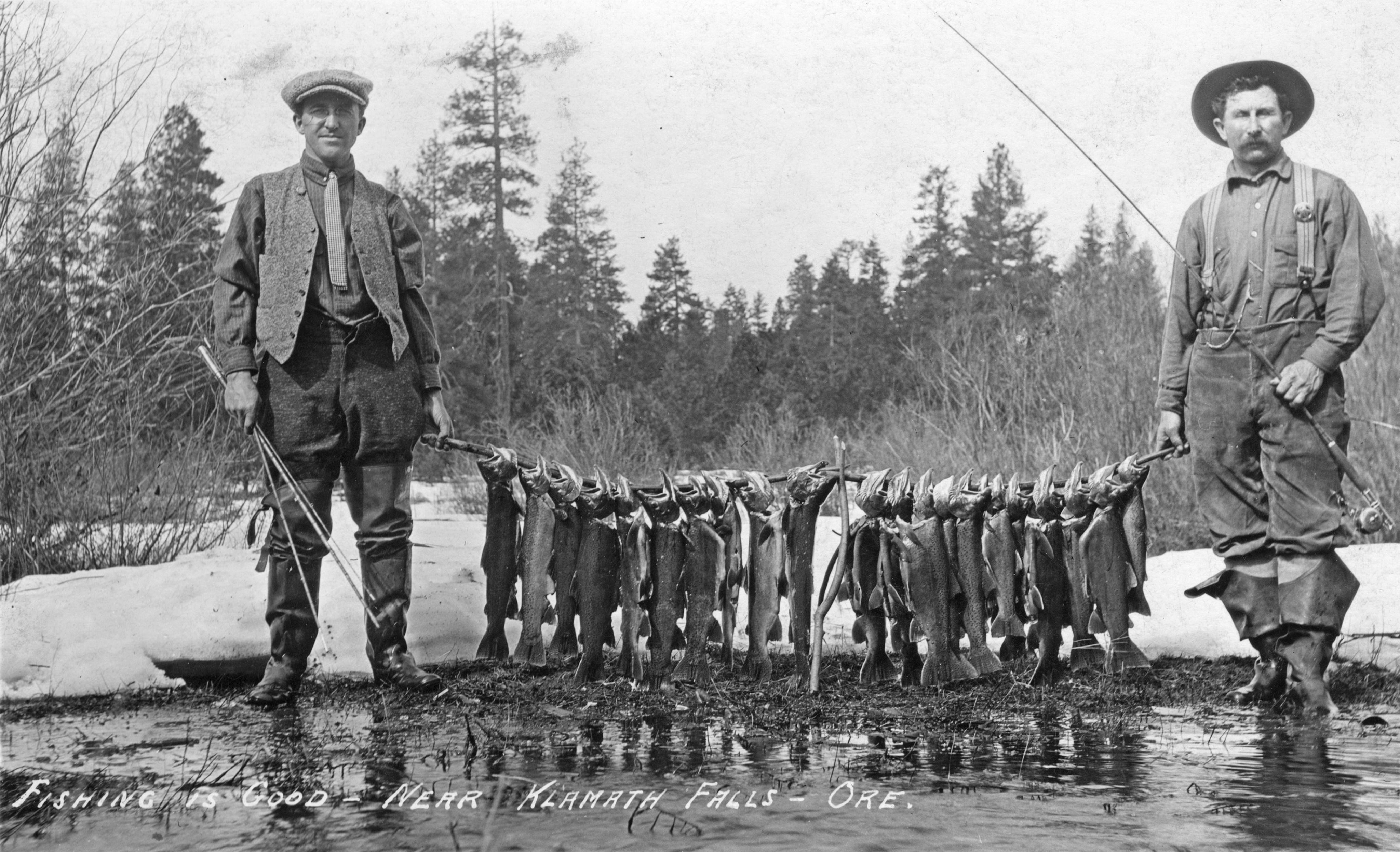 File fishing is good near klamath falls oregon for Devils lake oregon fishing