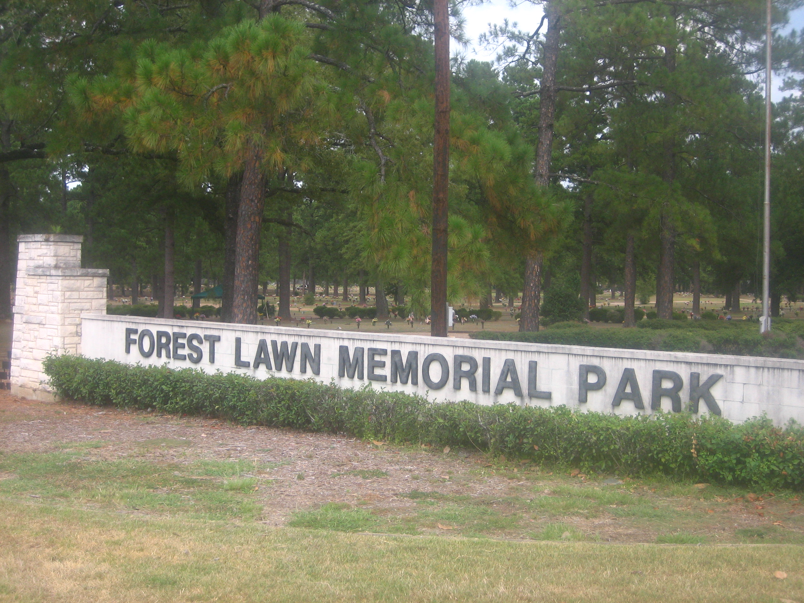ww1 landscape memorial forest - photo #22