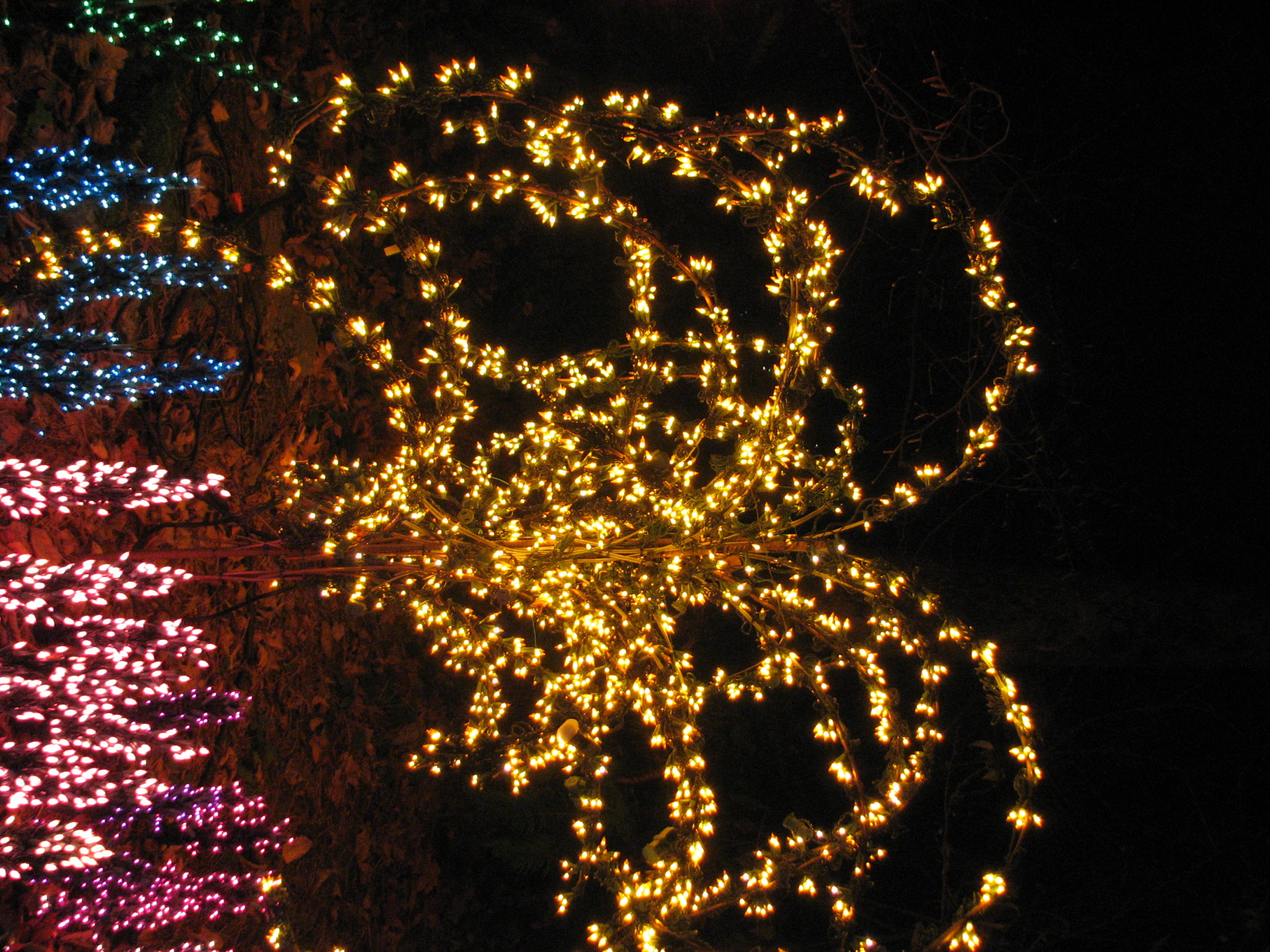 File:Garden d\'Lights 2008 at the Bellevue Botanical Garden, img046 ...
