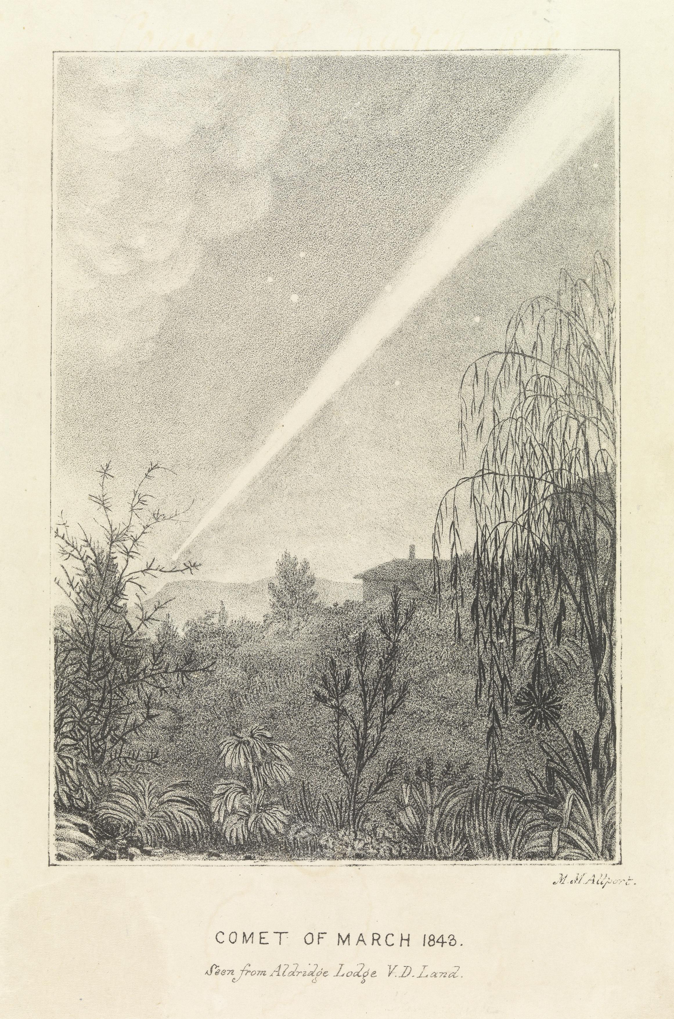 大彗星 - Wikipedia