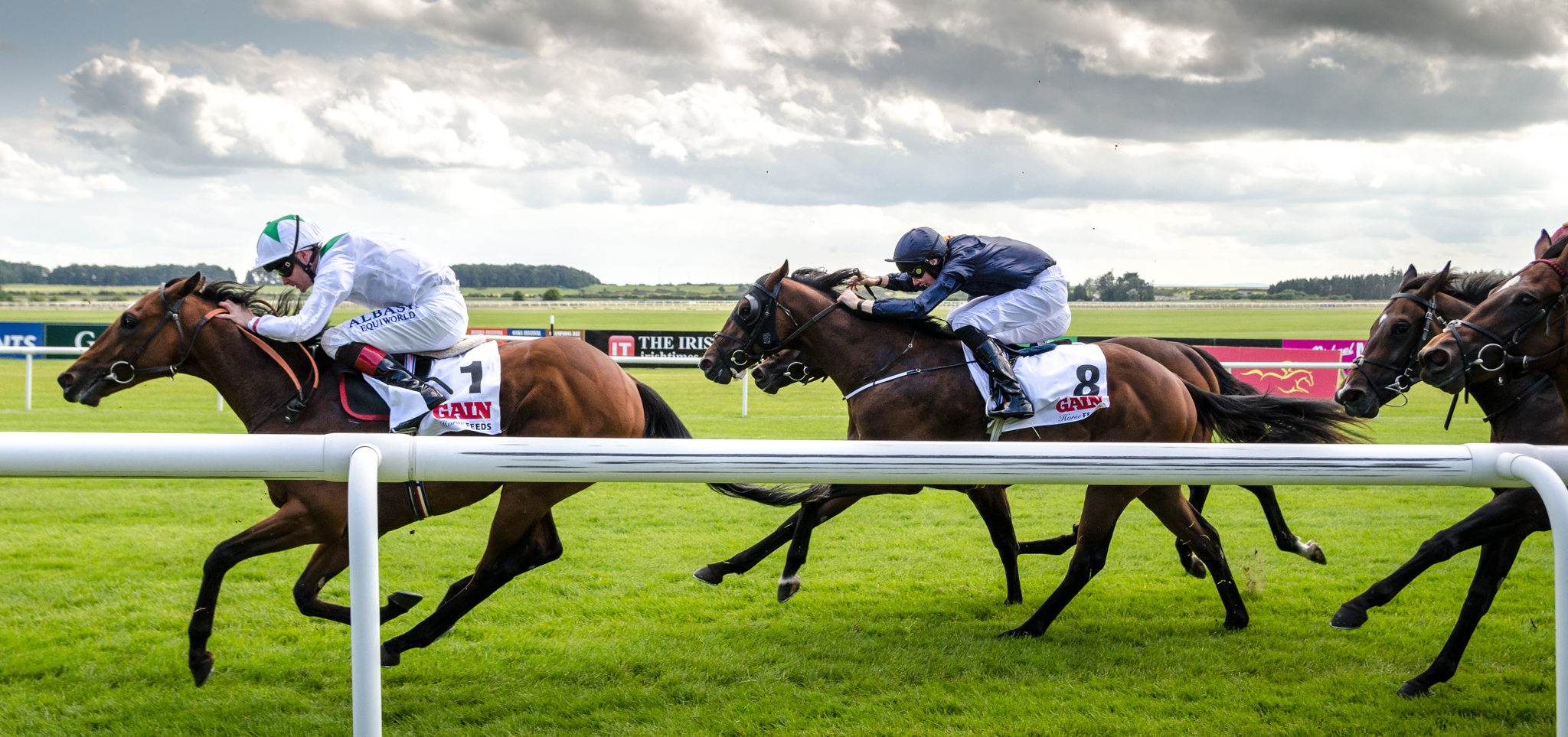 Irish horse racing betting terms claro tv colombia win sports betting