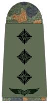 Luftwaffe-231-Hauptmann