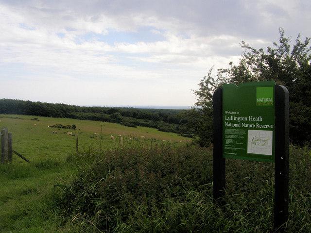 Lullington Heath National Nature Reserve, East Sussex - geograph.org.uk - 846940