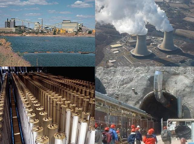 Image result for nuclear effects on the environment