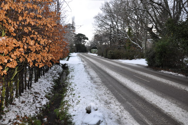 File:Park Road, Wootton Common - geograph.org.uk - 1332236.jpg