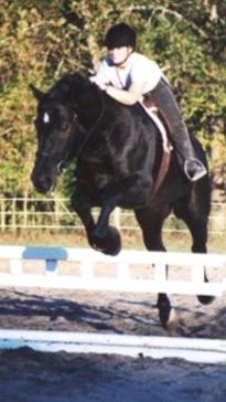 File:Percheron jump.jpg