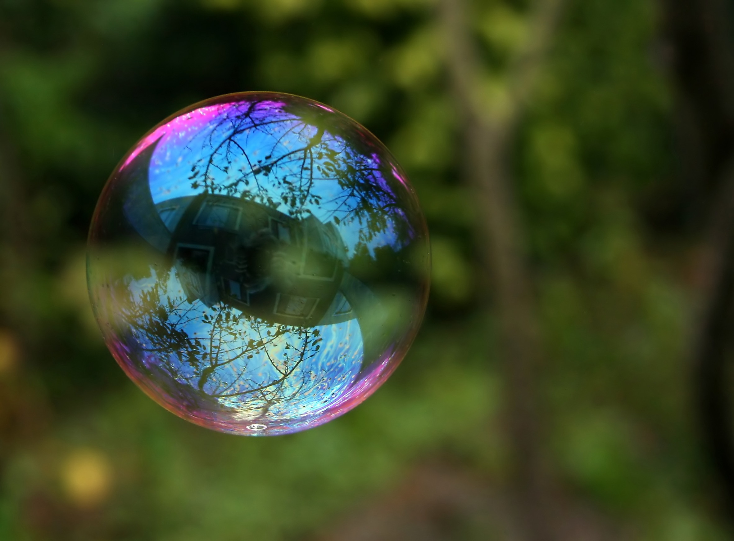 Description Reflection in a soap bubble edit.jpg
