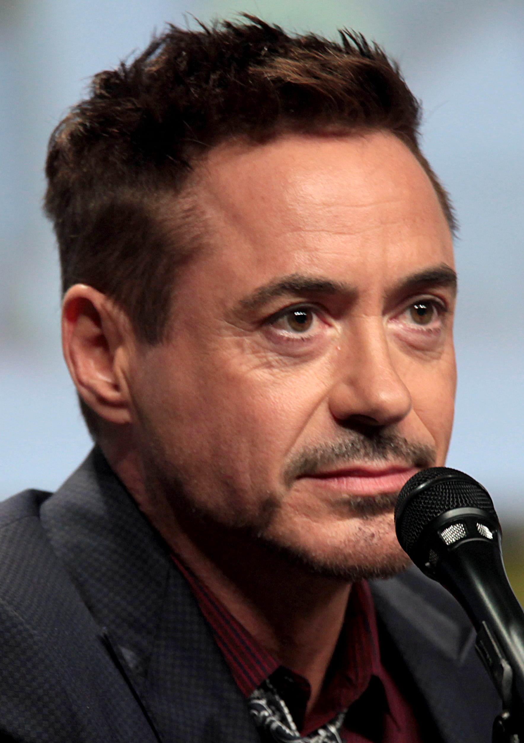 Robert Downey Jr. - Wikipedia Robert Downey