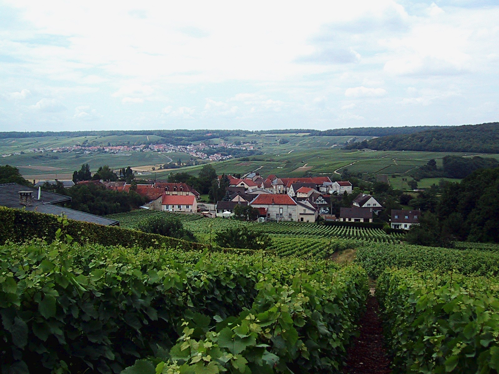 Champagne village profile romery on the right bank of the for Champagne marne