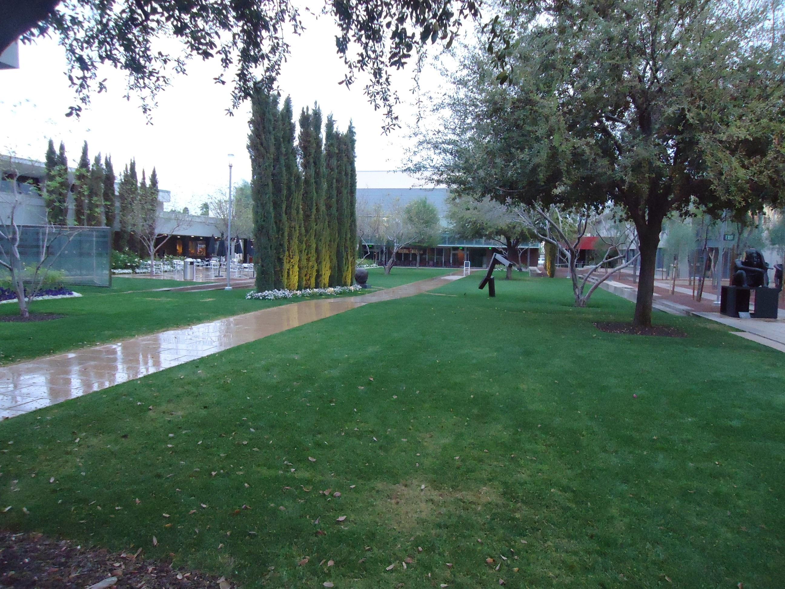 File:View Of Phoenix Art Museum Outdoor Garden Area.JPG