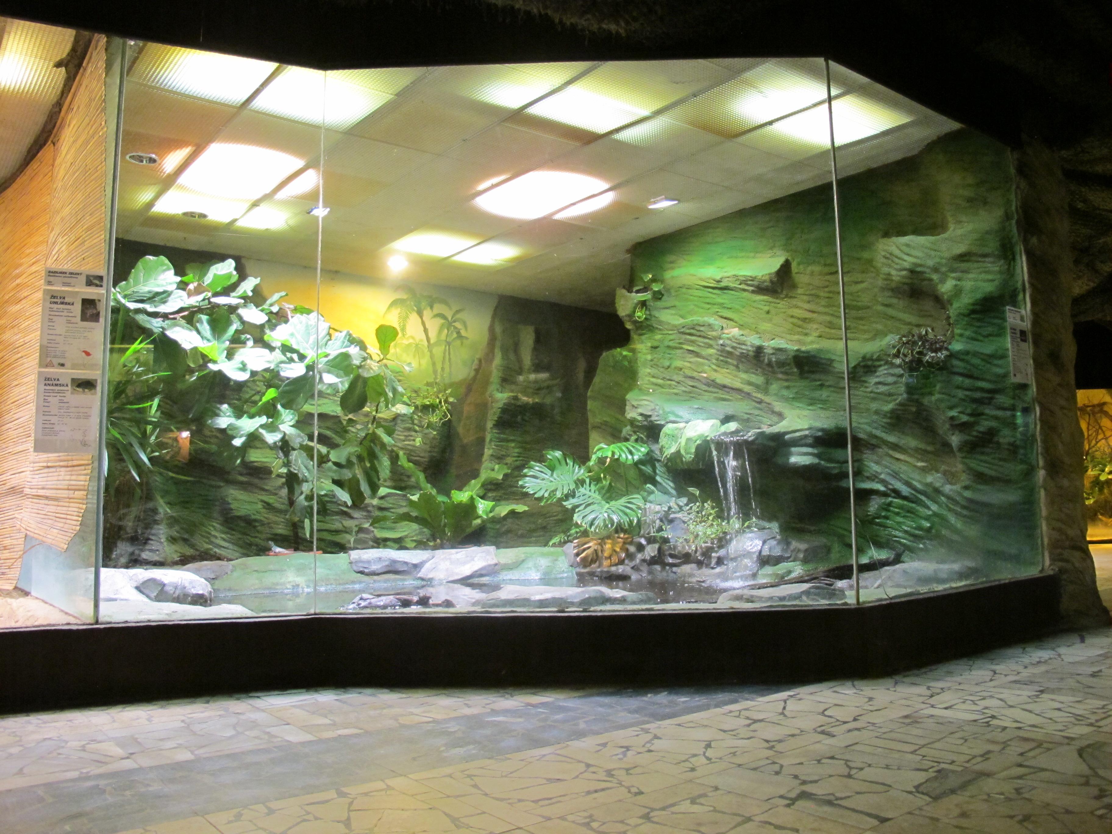 Reptile Room Part