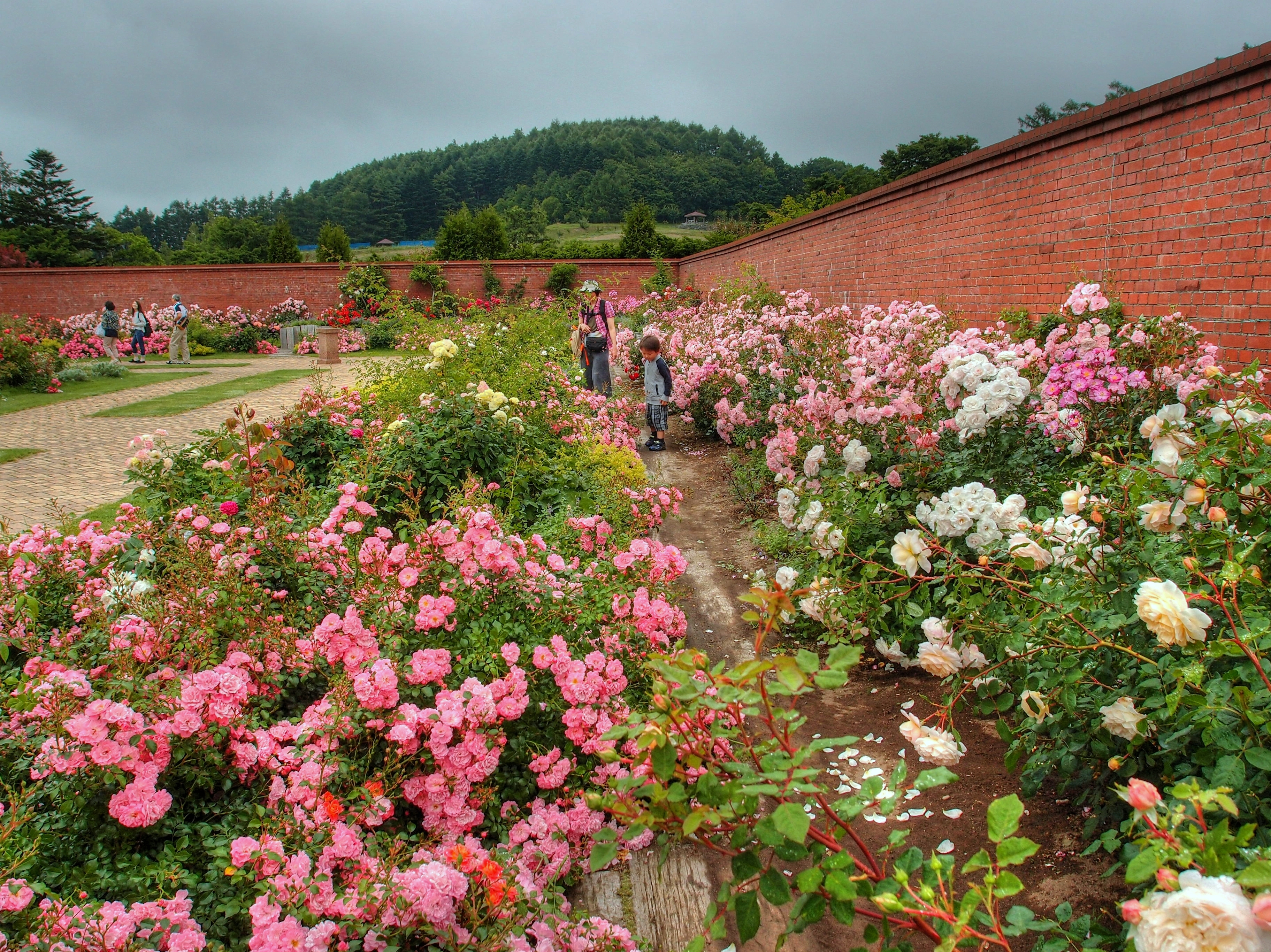 File:ゆにガーデン(Yuni Garden).jpg - Wikimedia Commons