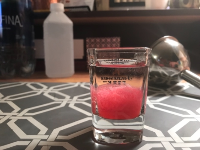 1 Strawberry DNA Extraction.jpg