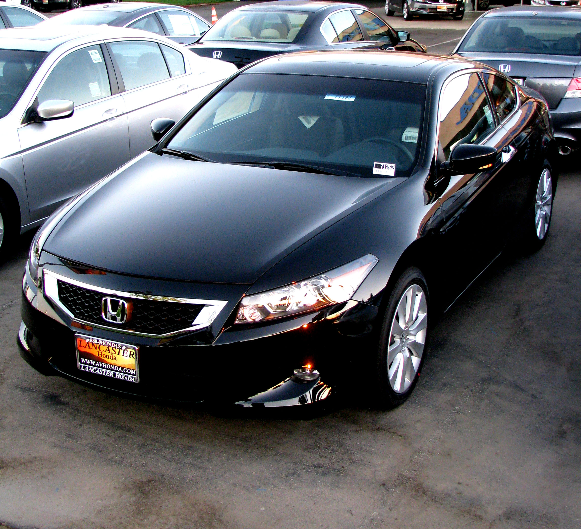 Honda Accord Lx >> File:2009 Honda Accord (2954587219).jpg