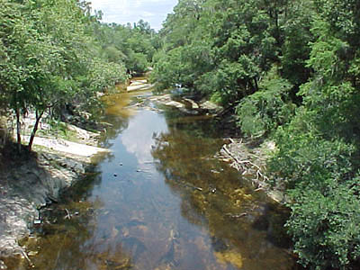 File:Alapaha River.jpg