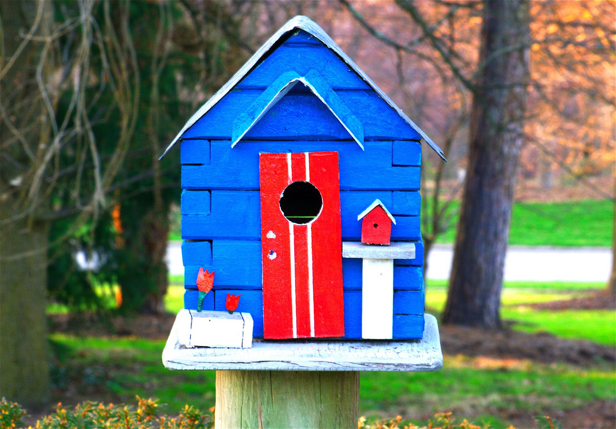 File birdhouse wikimedia commons for Types of birdhouses for birds
