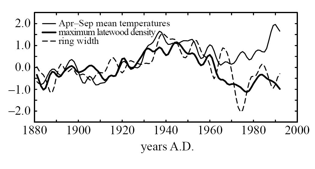 Briffa-tree_ring_density_vs_temperature_1880-2000.jpg