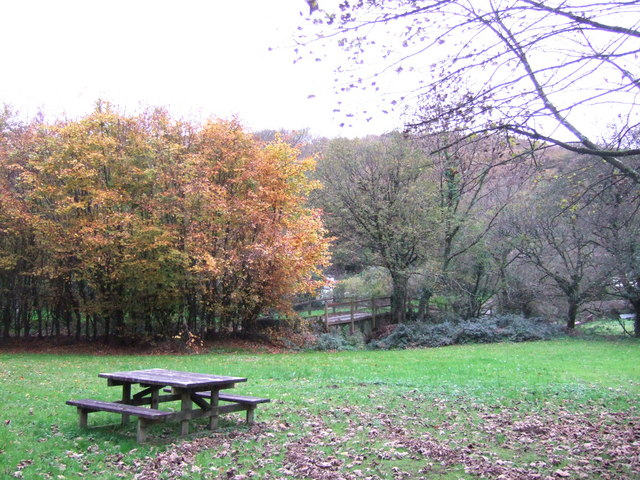 Cilrhedyn bridge picnic area in the Gwaun Valley - geograph.org.uk - 277579