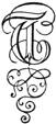 Fancy Letter T (6).jpg