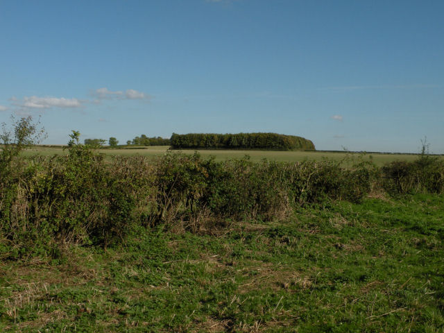 Fields and woods near Gunner's Hall - geograph.org.uk - 999661