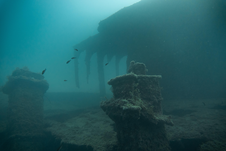 hms thesis submarine mashona
