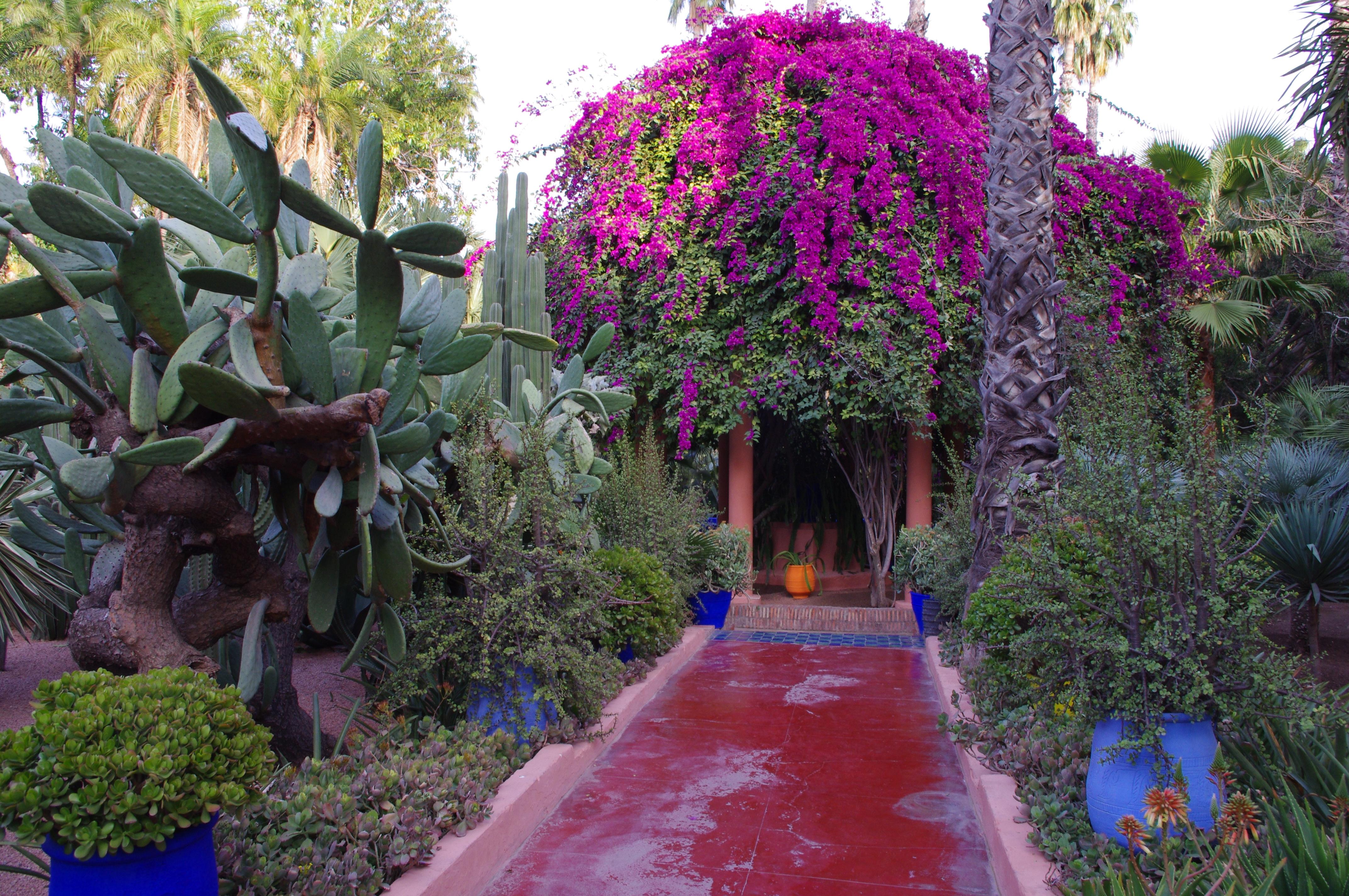 File jardin majorelle 18 30 28 jpg wikimedia for Jardin ysl marrakech