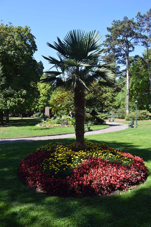 File Jardin Anglais De Vesoul 2 Jpg Wikimedia Commons