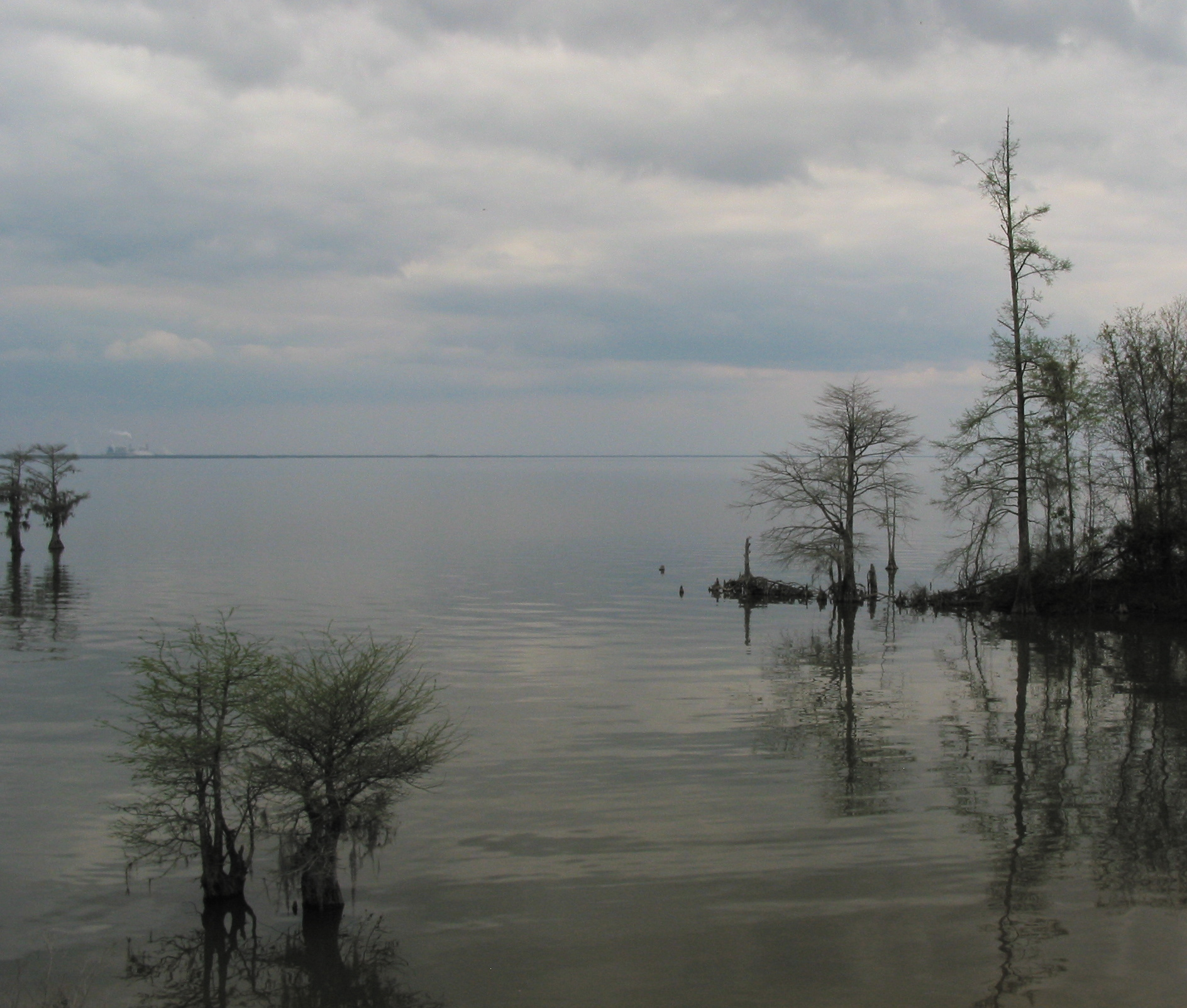 Lake Moultrie in the Lowcountry.