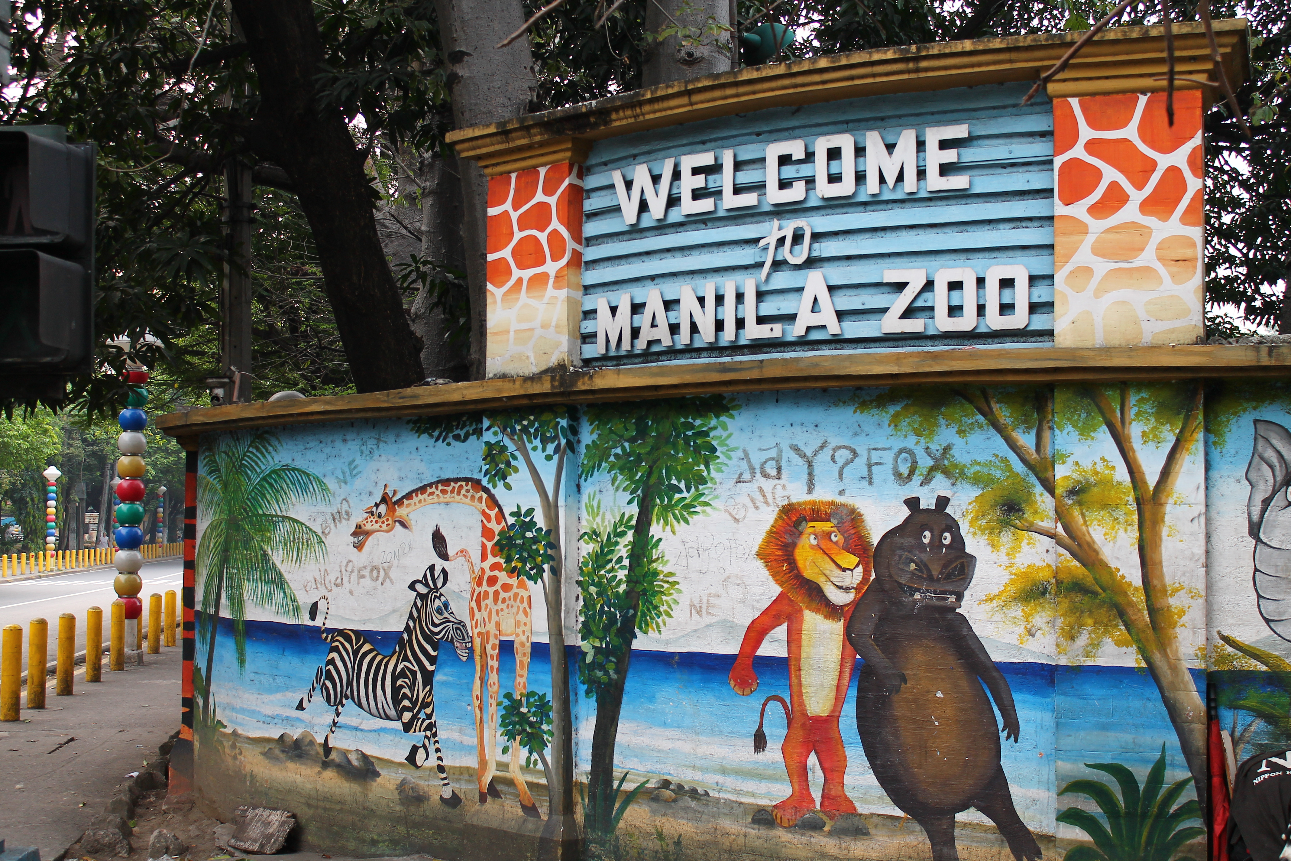 manila zoo Amid calls to improve the facilities at the country's capital zoo, the people for the ethical treatment of animals (peta) renews its appeal to close down manila zoo.