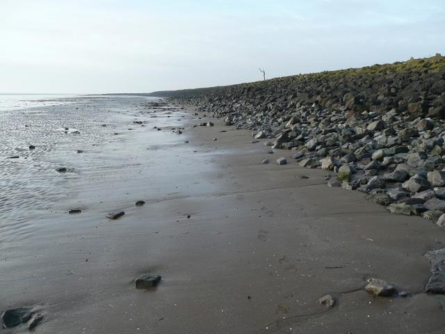 File:Muddy beach 2 - geograph.org.uk - 1140082.jpg