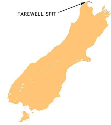 南岛送别角(Farewell Spit)海滩大量领航鲸搁浅 约300头死亡 - wuwei1101 - 西花社