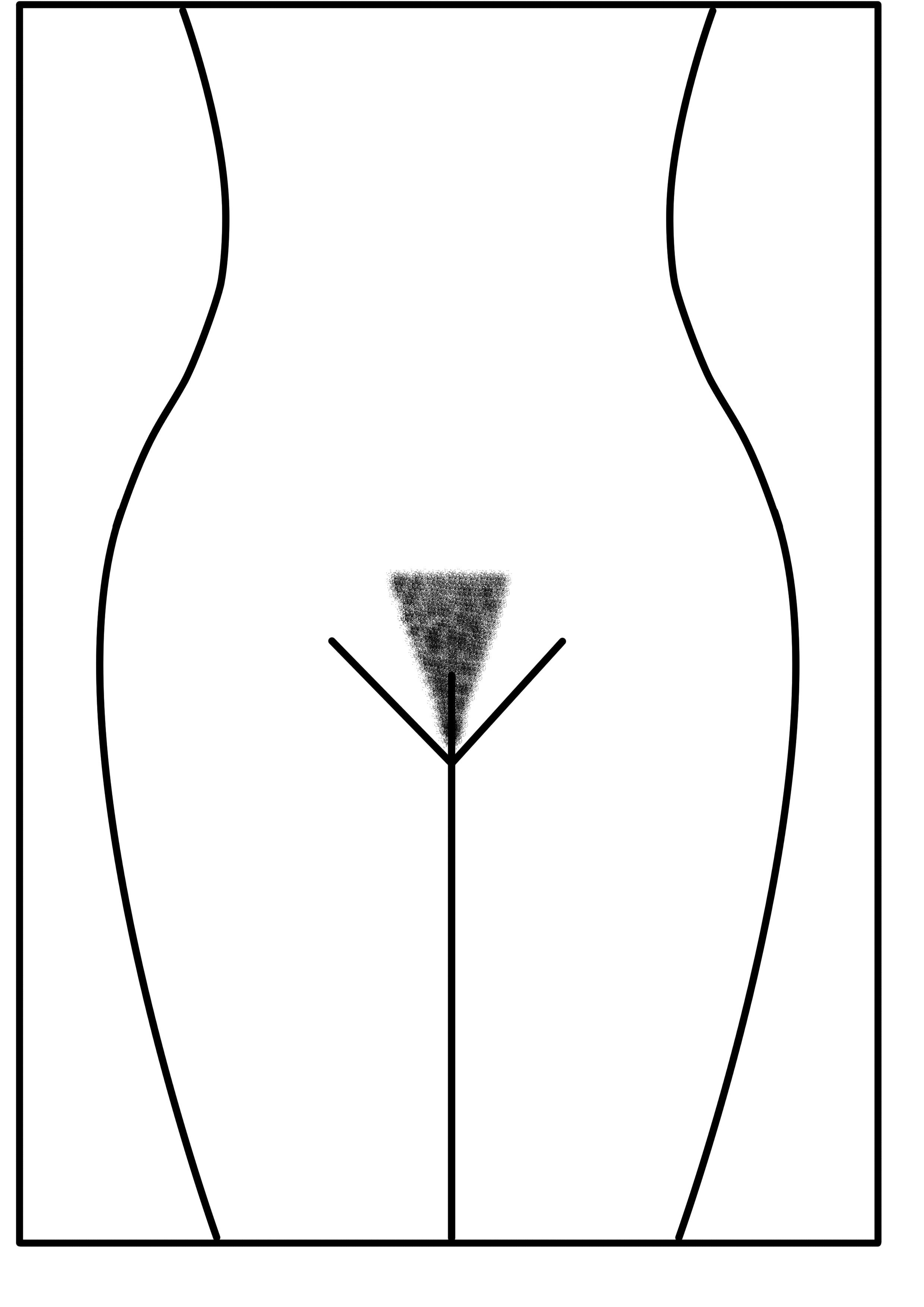 Женская интимная стрижка взлётная полоса