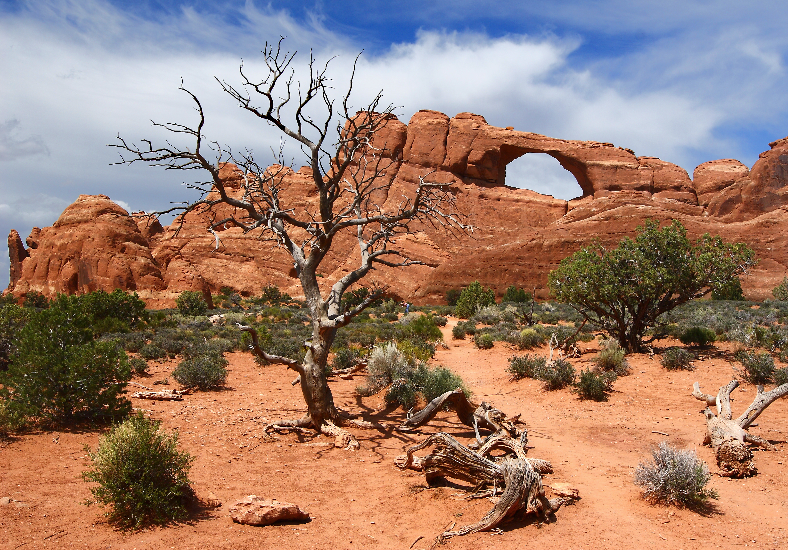 Man Taking A Photo Of The Skyline Arch In Arches National Park ...