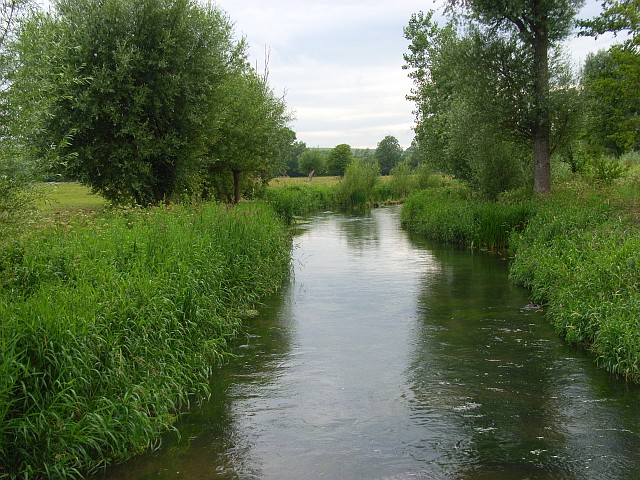 The River Wylye - geograph.org.uk - 475837