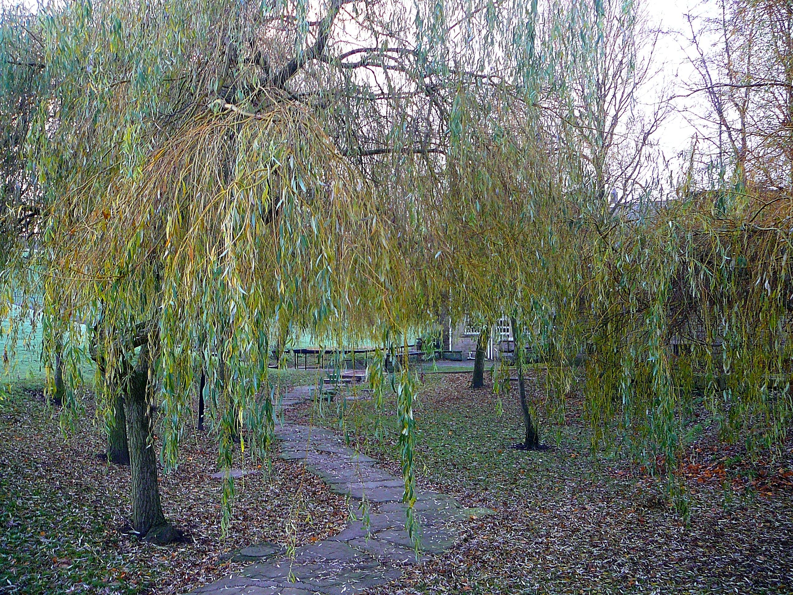 Stone-laid wandering path at Bradford University campus