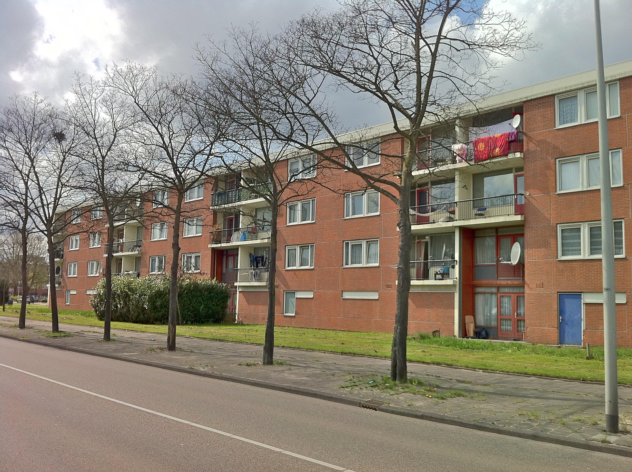 Sanitair winkel amsterdam noord: banneplein 155 1034 bm amsterdam