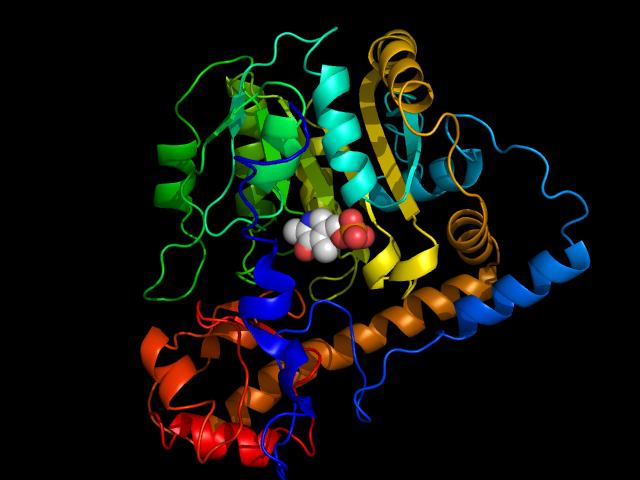 Depiction of Aminotransferasa