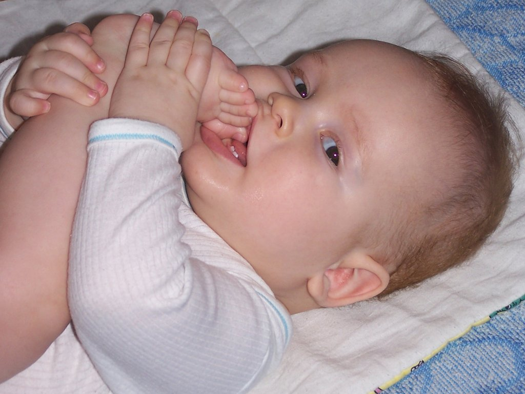 File:Baby-first teeth.jpg - Wikimedia Commons