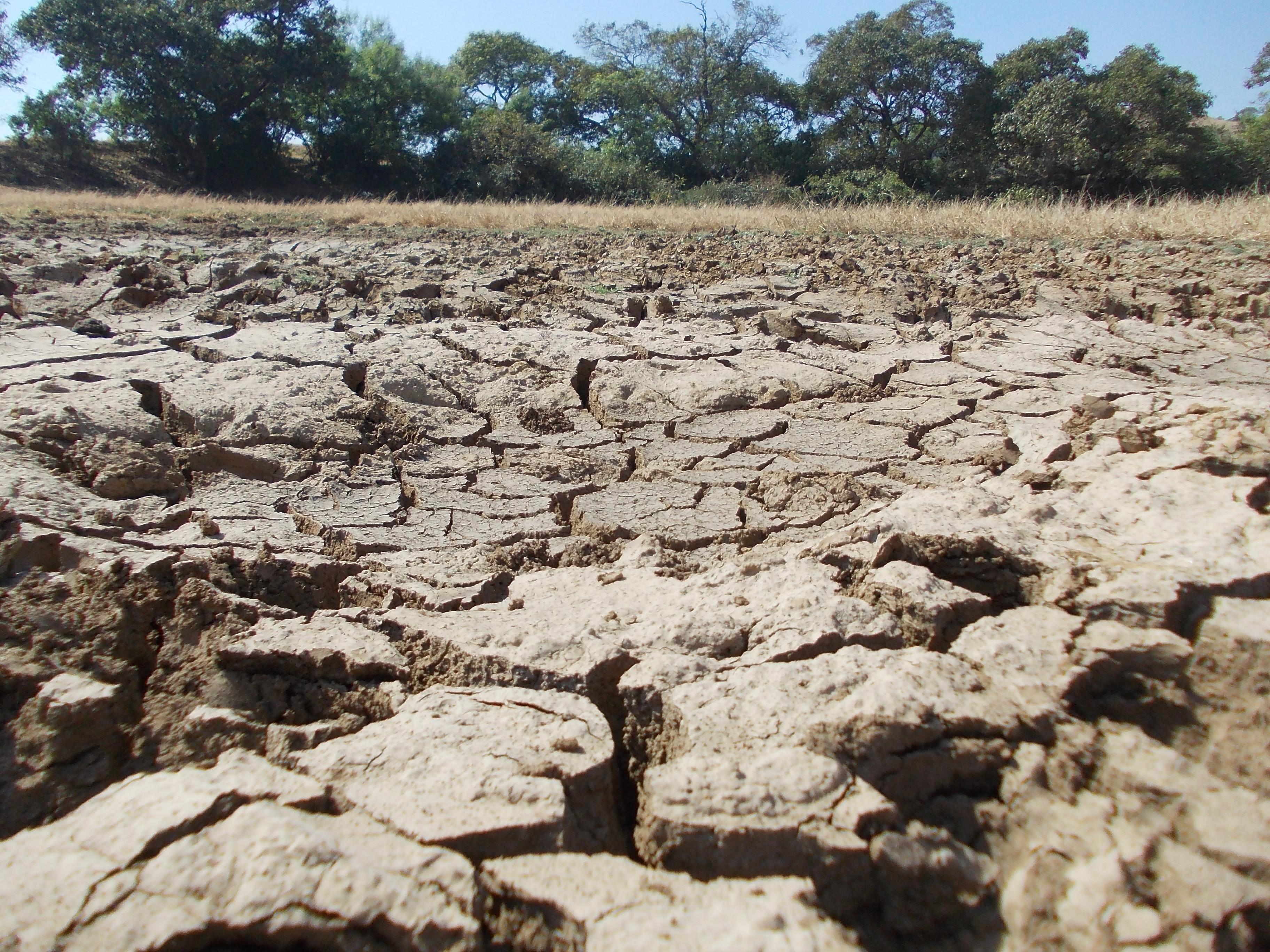 File barren land on the visapur fort pune jpg for Soil meaning in english